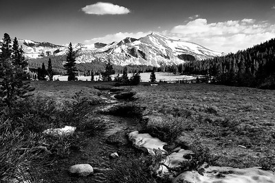 Mammoth Peak in B/W
