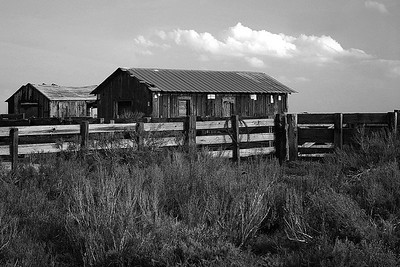 This Old House in B/W