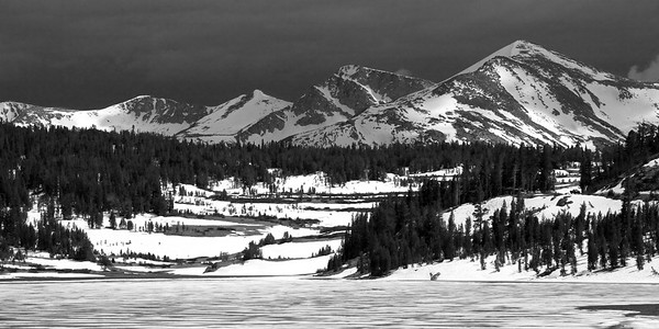 Wintertime at Tioga Lake in B/W
