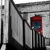 Red Door 11x14