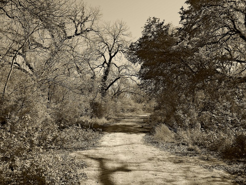 Ghost Road in Sepia