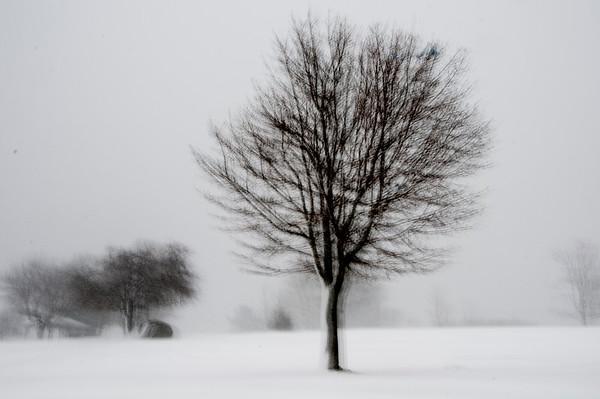 New Hampshire Park in Winter