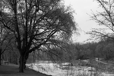 Spring Along The Humber River