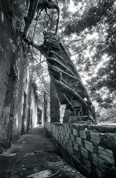Ruins in Paricatuba, Brasil