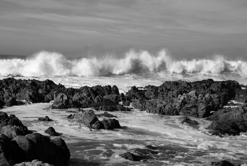 Pacific Grove Ca.