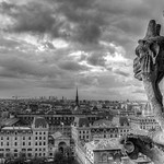 Notre Dame Grotesque [Looking North-West] [BW]