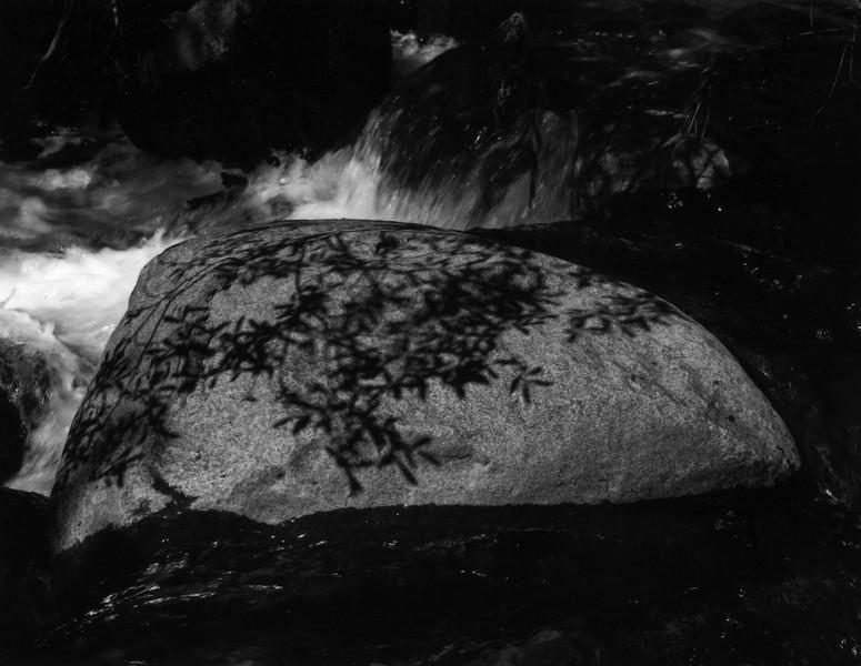 Rock and Shadows, Long Canyon Creek