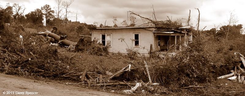 Still Standing - April 2011 Alabama Tornado Damage near Birmingham Alabama