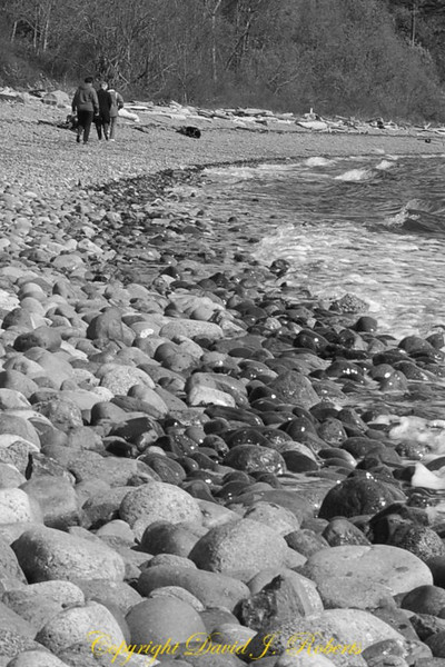 Rocky beach and visitors to Cherry Point near the Gulf Road, Washington