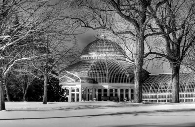 Marjorie McNeely Conservatory - Como Park, HDR