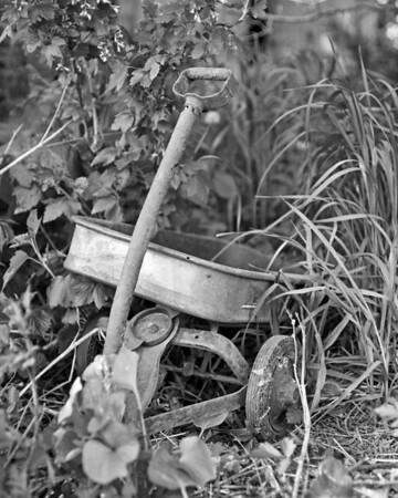 """""""Pull Wagon"""""""