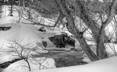 Chester Creek BW