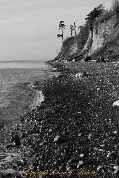 Beach at Point Whitehorn County Park, Whatcom County, Washington  B&W