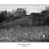 Old Maids Farm, South Glastonbury, CT