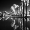 Encanto Park, Phoenix<br /> 2017