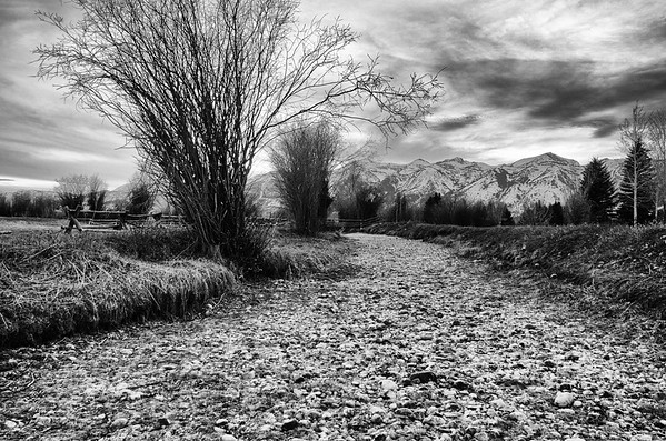 Jackson Hole, WY  in B&W