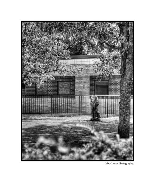 The courtyard lion at Greensburg Salem High School