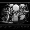 Harley-Davidson Panhead (2)