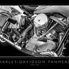 Harley-Davidson Panhead (1)