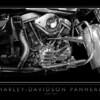 Harley-Davidson Panhead (3)