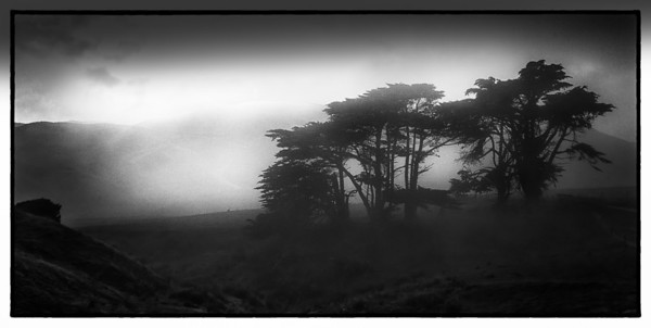 Fog on the Barrow-downs Golden Bay New Zealand