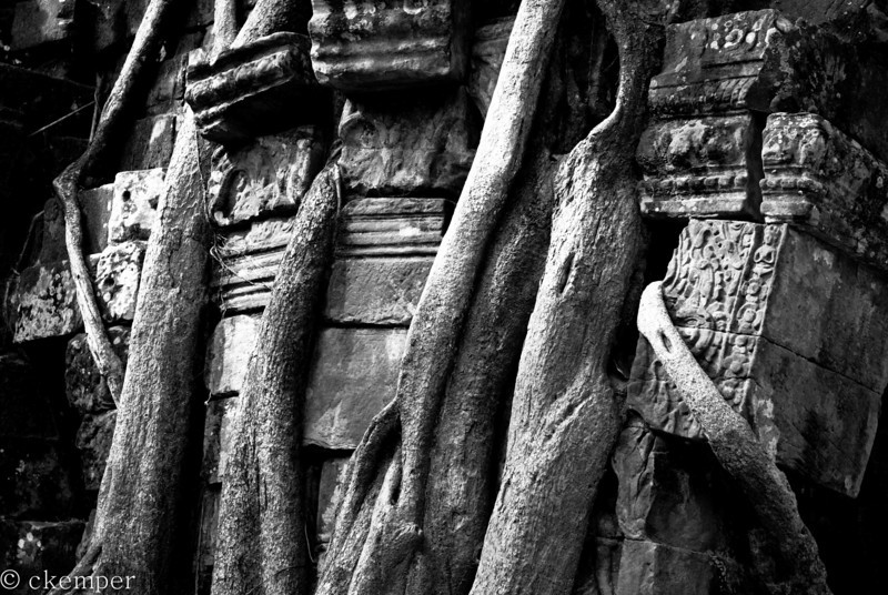 Stones and Roots, Cambodia