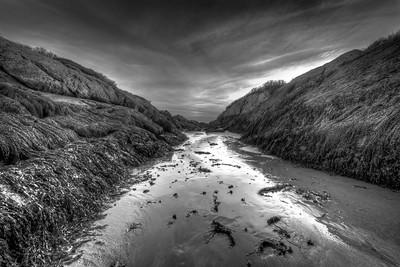 Hermit Island Low Tide