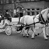 Horse-drawn carriage on Main Street in Bethlehem, Pennsylvania.