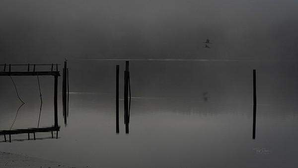 Foggy flyby