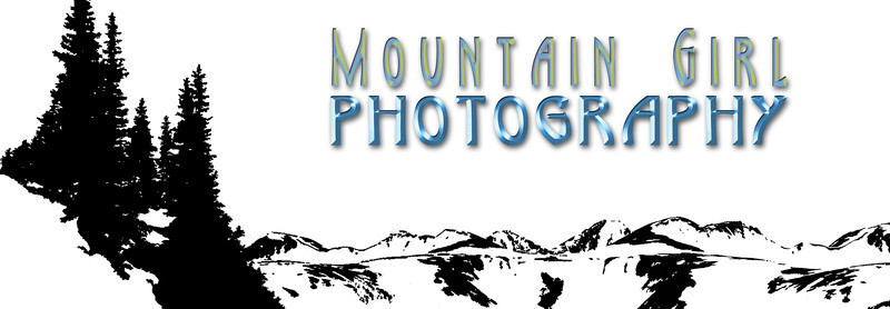 Mountain Girl banner logo black n white copy