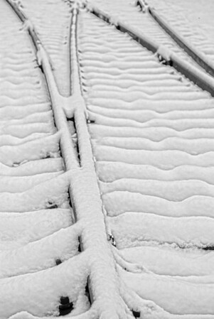Track LInes in the snow