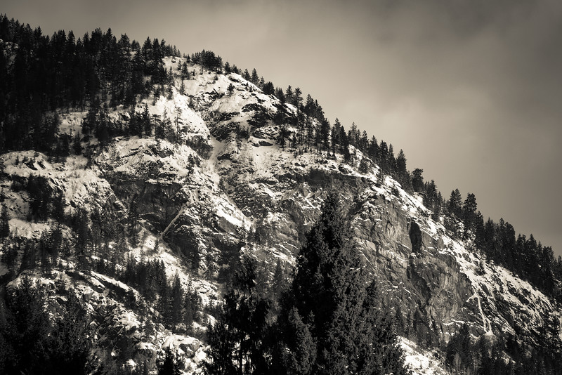 Mt. Sentinel in Black and White