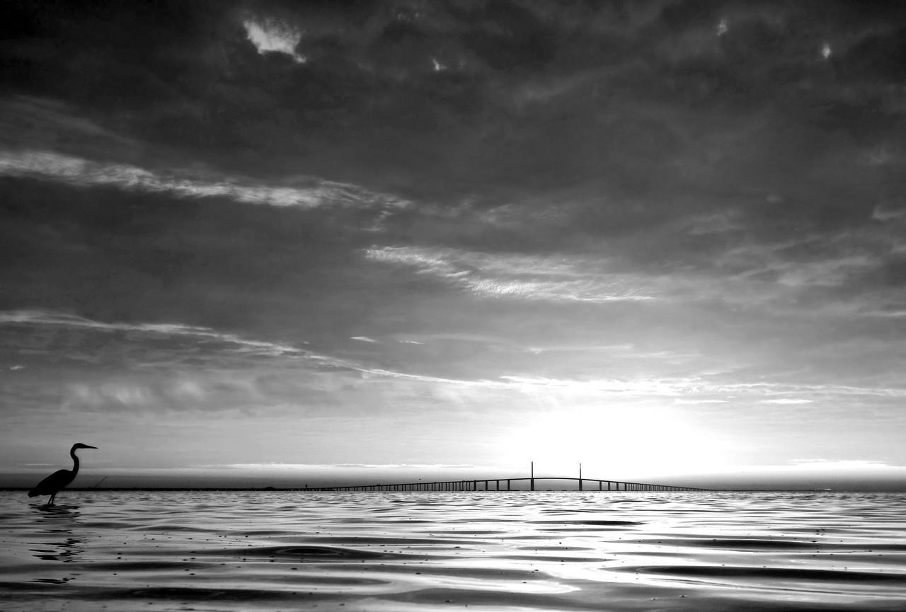 sunrise_2559-BW
