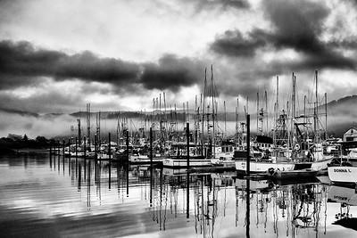Garibaldi Harbor