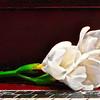 Painterly Flower