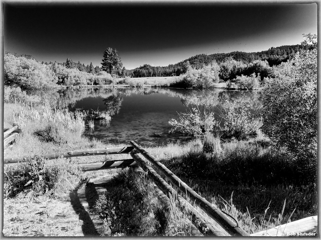Rabe Meadows in Black and White