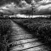 Storm clouds build over the boardwalk at the Saco Heath in Saco, Maine.