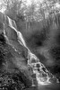 Mist Off the Falls