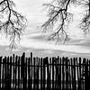 Jamestown Fence