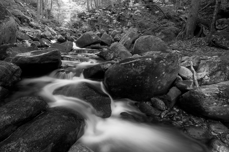 Bumpus Brook I