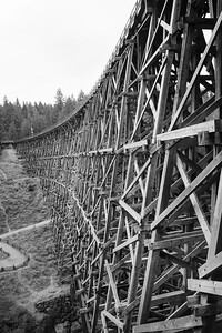 Kinsol Trestle Bridge, Vancouver Island.