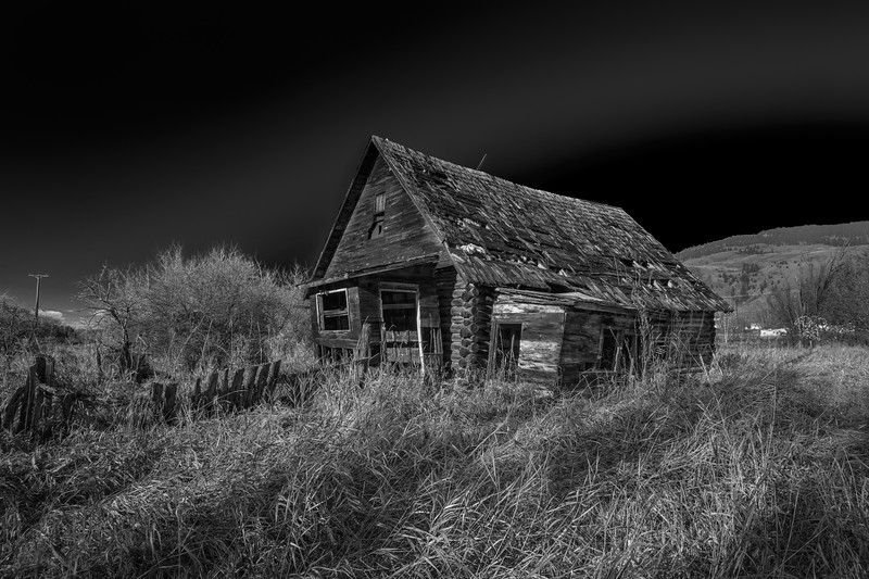 Lone Cabin Black and White