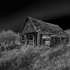 Lone Cabin Black and White