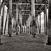 Under the Pier in Old Orchard Beach, Maine