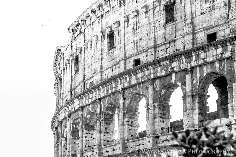 Rome Colosseum Black and White