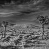 Sunset near Death Valley, California