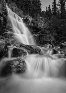 Tangle Falls B+W