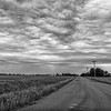 Country road near the Platte River, Kearney, Nebraska