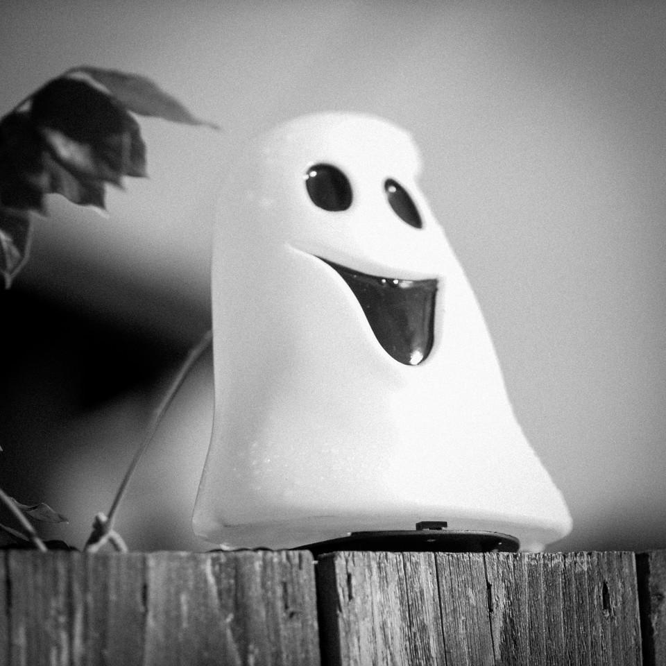 Halloween is coming | Seattle, WA | October 2017