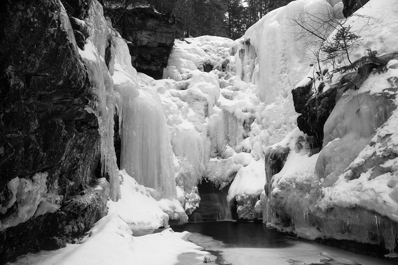The Great Frozen Owl of Hawthorne Falls